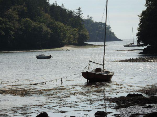 marrée basse Finistère